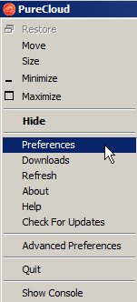 how to get to preferences on windows