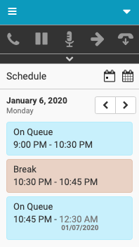 Day view of agent's schedule